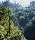 Una visi�n cristiana del hombre y la naturaleza