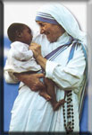Madre Teresa hubiera dicho lo mismo �No lo mates, d�melo a mi!
