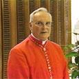 El cardenal Amigo defiende que