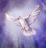 El Espíritu Santo nos enseña, nos recuerda y nos hace hablar