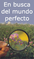 En busca del mundo perfecto