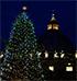 El �rbol de Navidad, signo y recuerdo de la luz divina